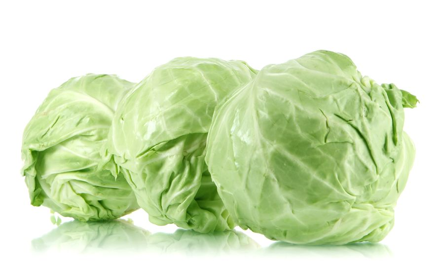 Cabbage and his benefits